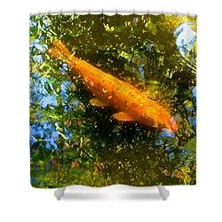 Koi Fish 1 Shower Curtain by Amy Vangsgard
