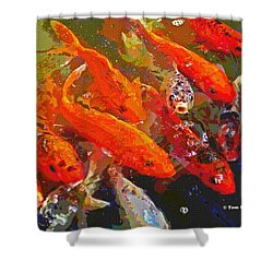 Koi Fish  Shower Curtain by Tom Janca