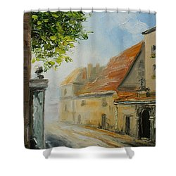 Krakow- Reformacka Street Shower Curtain
