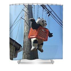 Kung Fu Panda Shower Curtain