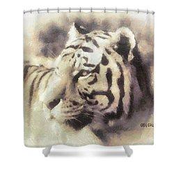 Kwaai Shower Curtain