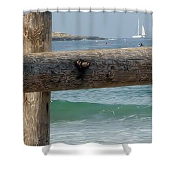 Shower Curtain featuring the photograph La Jolla Scene by Susan Garren