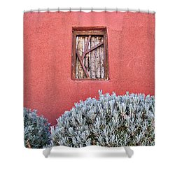 La Pared - 2 Shower Curtain by Nikolyn McDonald