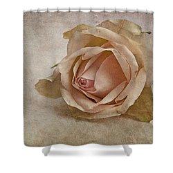 la vie en rose II Shower Curtain by Claudia Moeckel