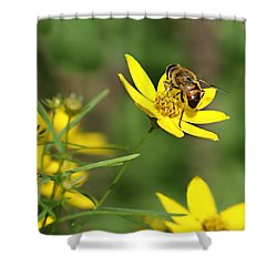 L'abeille Shower Curtain by Nikolyn McDonald
