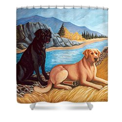 Labrador Retrievers Shower Curtain