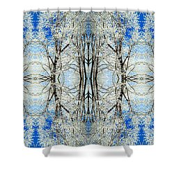 Lacy Winter Trees Abstract Art Photo Shower Curtain
