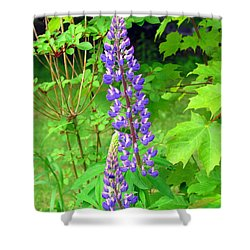 Lady Lupine Shower Curtain