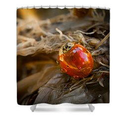 Lady Of Leisure Squared Shower Curtain by TK Goforth