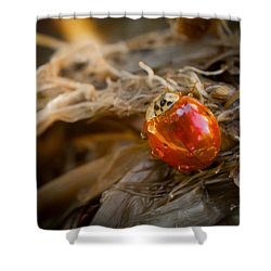 Lady Of Leisure Shower Curtain by TK Goforth