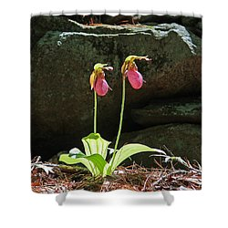 Lady Slippers At Moore State Park 5 Shower Curtain