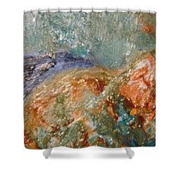 Lady The Cat Sleeping Soundly And Peacefully Shower Curtain