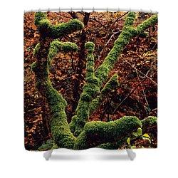 Lael Forest Garden 1 Shower Curtain