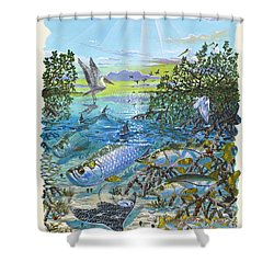 Lagoon Shower Curtain by Carey Chen