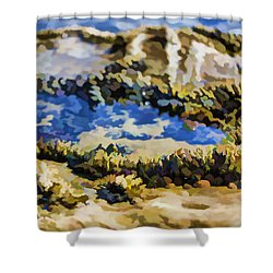 Laguna Beach Tide Pool Pattern 3 Shower Curtain by Scott Campbell