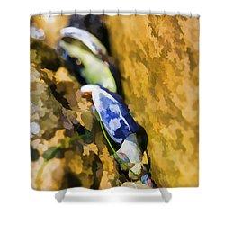 Laguna Beach Tide Pool Pattern 6 Shower Curtain by Scott Campbell