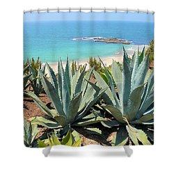 Laguna Coast With Cactus Shower Curtain