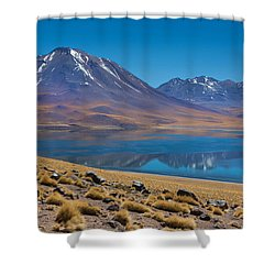 Laguna Miscanti Shower Curtain