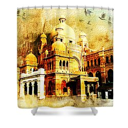 Lahore Museum Shower Curtain by Catf
