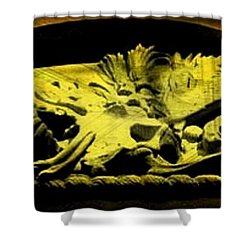 Laid To Rest Shower Curtain by John Malone