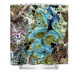 Lake Carnegie Western Australia Shower Curtain by Adam Romanowicz