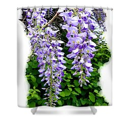Lake Country Wisteria Shower Curtain
