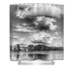 Lake De Soto Shower Curtain by Howard Salmon