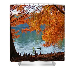 Lake Ella Morning Shower Curtain