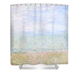 Lake Michigan At Oak St Bch Chicago Shower Curtain