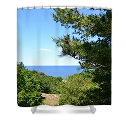 Lake Michigan From The Top Of The Dune Shower Curtain by Michelle Calkins