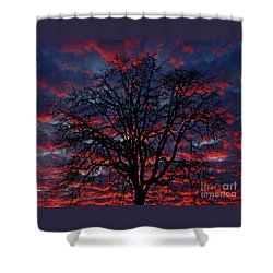 Lake Oswego Sunset Shower Curtain by Nick  Boren