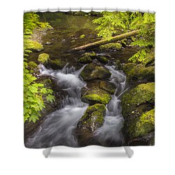 Lake Quinault Creek 2 Shower Curtain