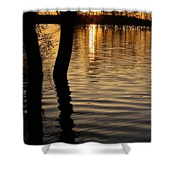 Lake Silhouettes Shower Curtain by Julie Andel