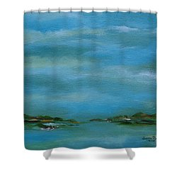 Shower Curtain featuring the painting Lake Wallenpaupack Early Morning by Judith Rhue