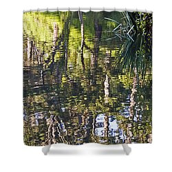 Shower Curtain featuring the photograph Lakeshore Reflections by Kate Brown