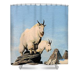 Lamoille Goats Shower Curtain