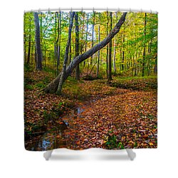 Land Of The Fairies Shower Curtain