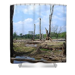 Shower Curtain featuring the photograph Land Of The Lost by Jane Ford