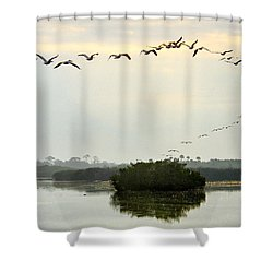 Landing Pattern Shower Curtain