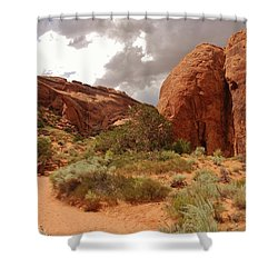 Landscape Arch - Utah Shower Curtain by Dany Lison