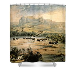 Landscape With Buffalo Ont The Upper Missouri Shower Curtain by Karl Bodmer