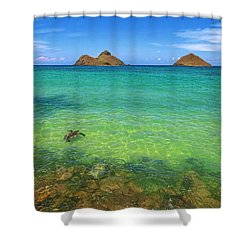 Lanikai Beach Sea Turtle Shower Curtain