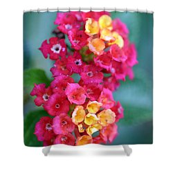 Shower Curtain featuring the photograph Lantana by Henrik Lehnerer