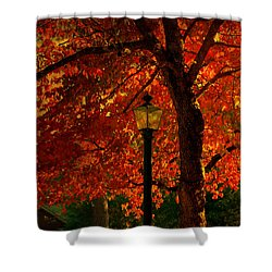 Lantern In Autumn Shower Curtain