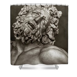 Laocoon Shower Curtain