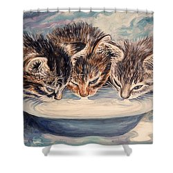 Lap Of Luxury Kittens Shower Curtain by Linda Mears