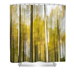 Larch Grove Blurred Shower Curtain by Anne Gilbert