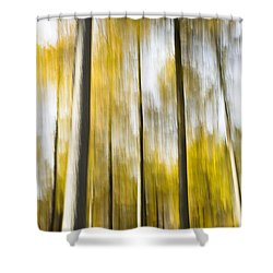 Larch In Abstract Shower Curtain by Anne Gilbert