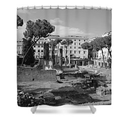 Shower Curtain featuring the photograph Largo Di Torre - Roma by Dany Lison