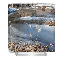 Last Days Of Winter Shower Curtain